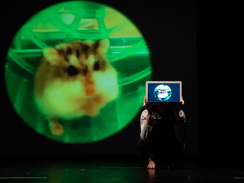 danzatrice con tablet, sullo sfondo la proiezione della foto di un criceto